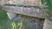medieval trough & poppies outside the studio
